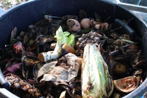 food scraps - how to make a compost bin