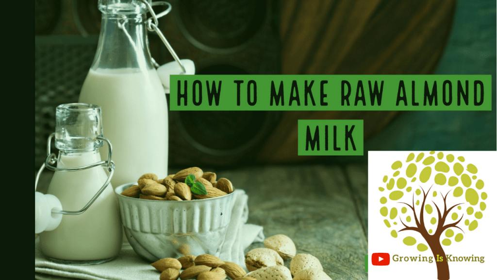 how to make Raw Almond Milk Recipe