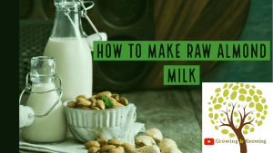 how to make Raw Almond Milk Recipe